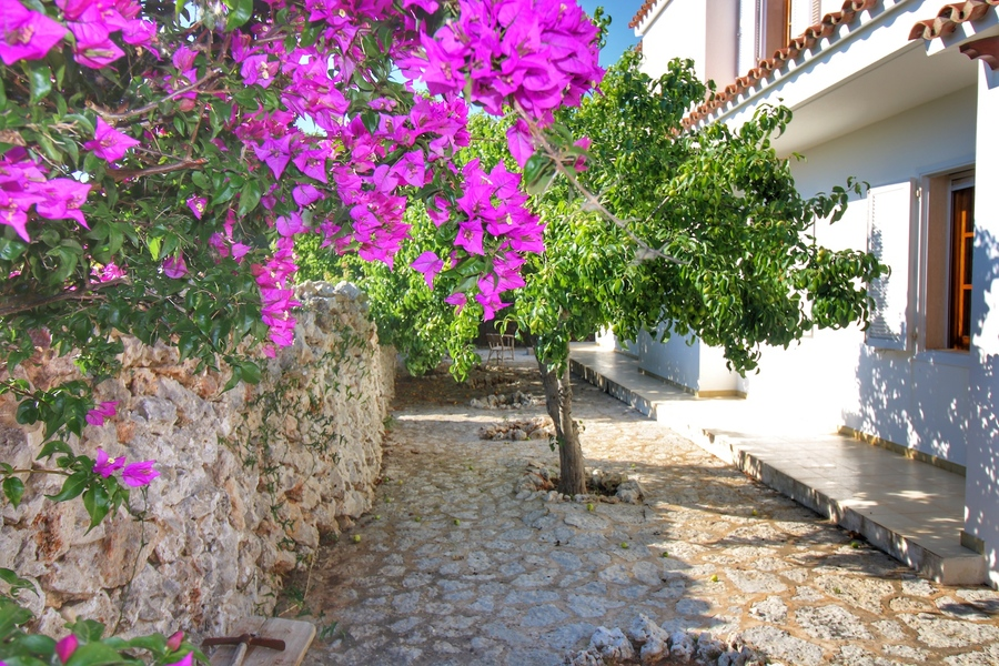 4 Bedroom Noria Riera Villa