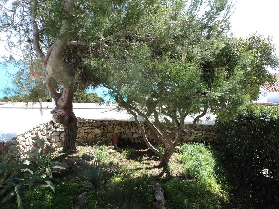 Villa Punta Prima For sale