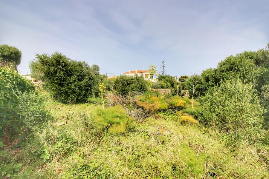 1966: Land for sale in Trebaluger