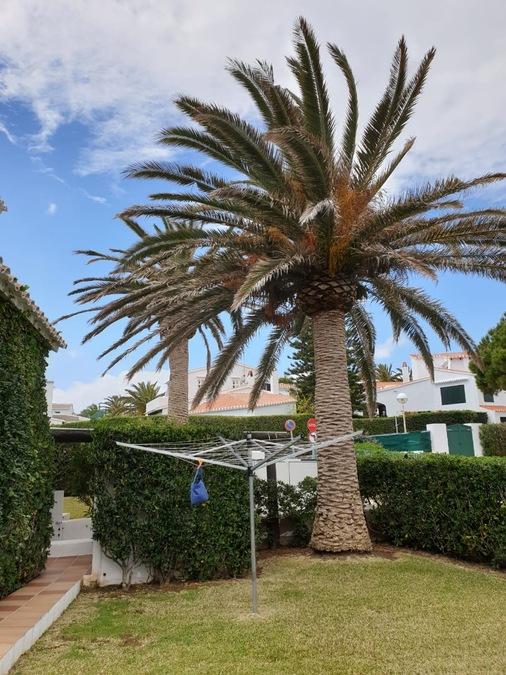 2030: Villa for sale in Sol del Este